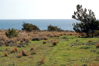 Land in Analipsis for sale
