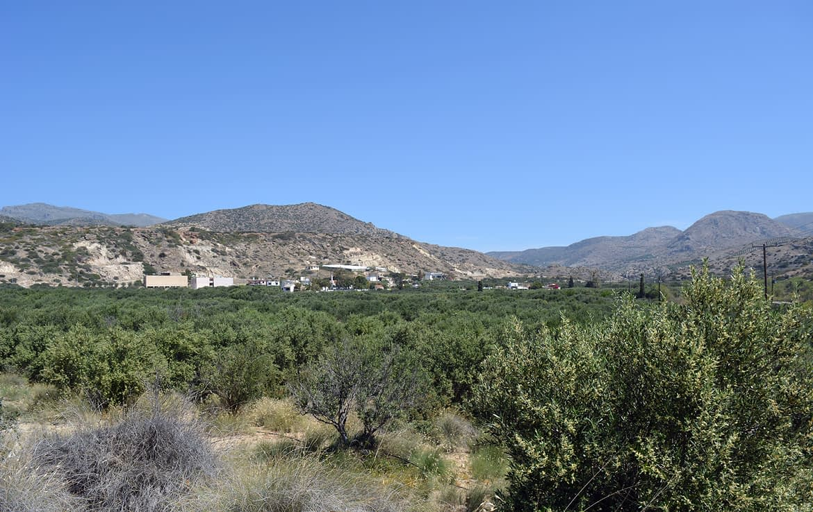 Land for sale in Pilalimata